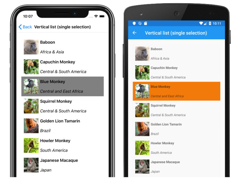 A (r)evolution for displaying data: Xamarin Forms CollectionView